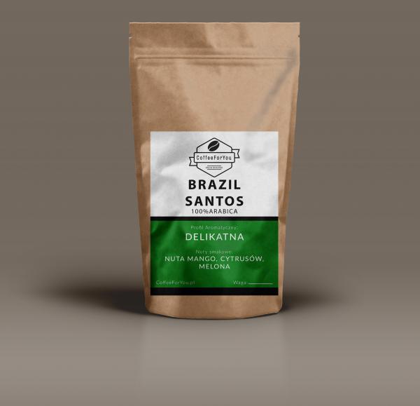 santos-high-bg